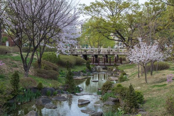 Jangchundan Park in Seoul, South Korea