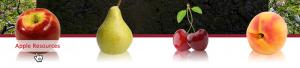 animated-fruit