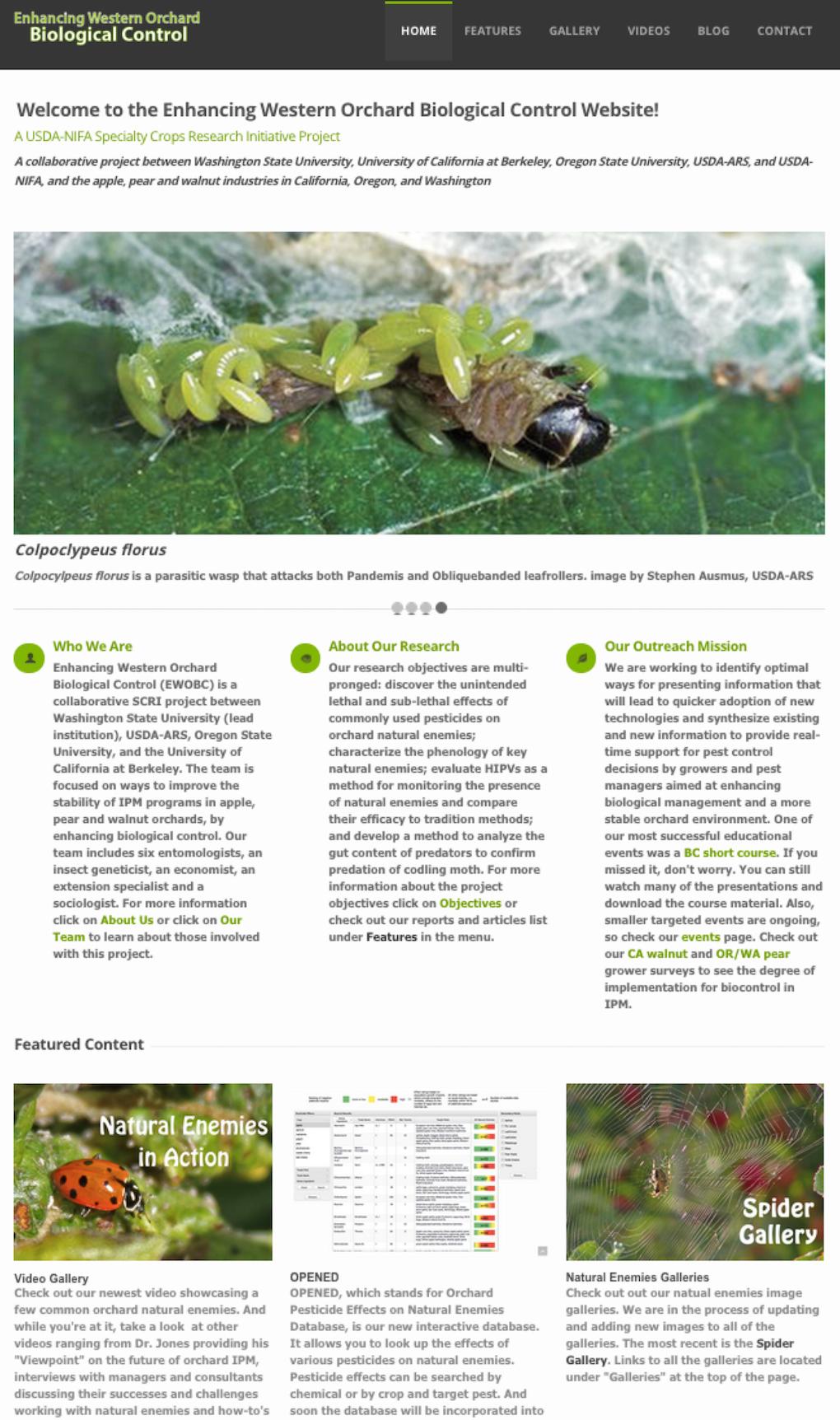 arthropod pesticide resistance database