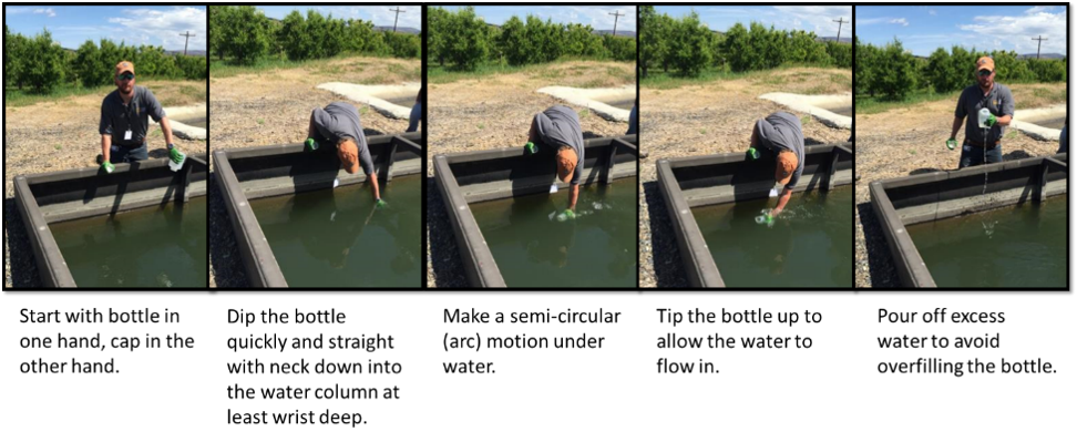 Figure 4. Procedure for sampling open surface water canals. Photo credit WTFRC.