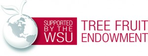 Suppported by the WSU Tree Fruit Endowment