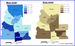 Figure 2. Overall frequency distribution of blue mold and gray mold across 10 counties surveyed in 2016. Deeper colors indicate a higher decay rate.