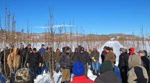 Pear pruning demonstration with Dr. Stefano Mussachi Tonasket Jan 2017. Photo T. DuPont, WSU Extension.