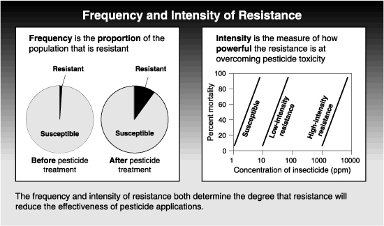 graphs of frequency and intensity of resistance