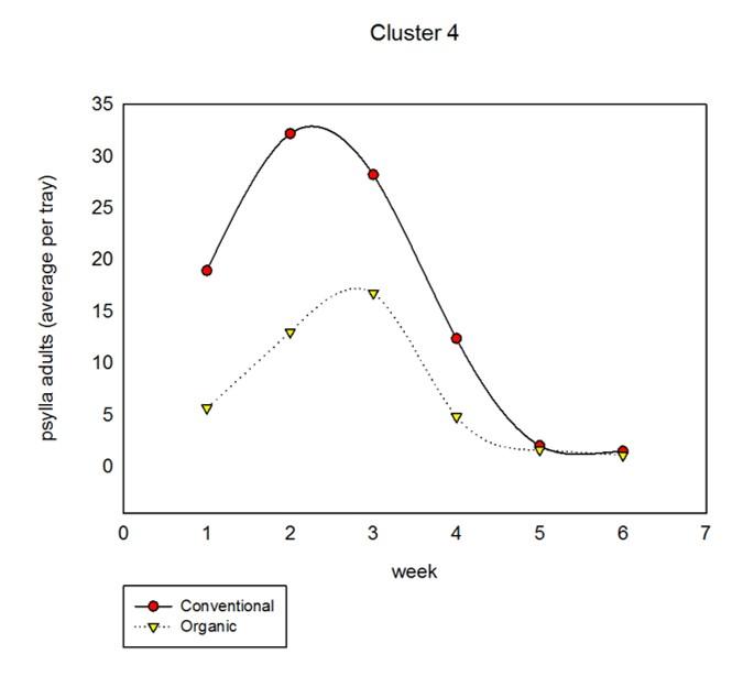 cluster4