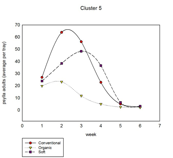 cluster5