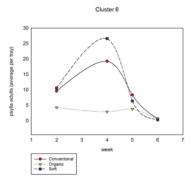 cluster6