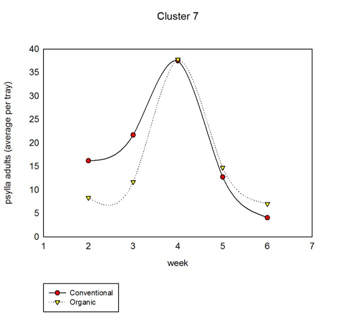 cluster7