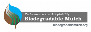 BDM-logo
