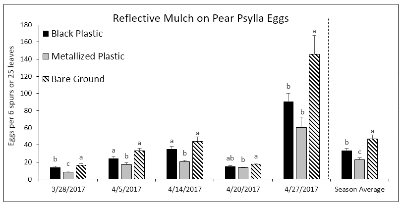 Fig 3. Average number of eggs per 6 spurs or 25 leaves. Bars within a column that do not share a common letter are significantly different.