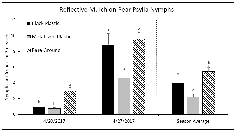 Fig 4. Average number of nymphs per 6 spurs or 25 leaves. Bars within a column that do not share a common letter are significantly different.