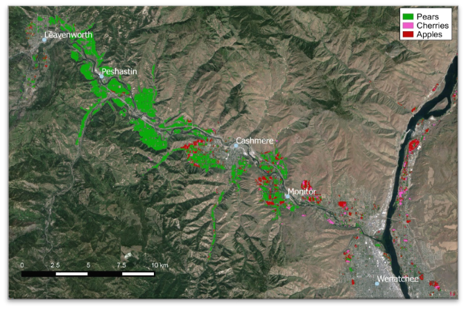 Figure 4. Wenatchee valley orchards: pears (green), cherries (pink), apples (red).