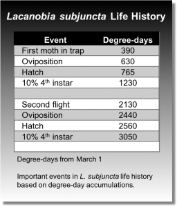 Important events in Lacanobia subjunctive life history based on degree-day accumulations.