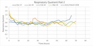 Graph of the respiratory quotient for Pod 2 fruit during O2 challenges.