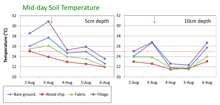 Graph showing differences between bare ground, wood chip, fabric, and tillage treatments on soil temperature at different depths.