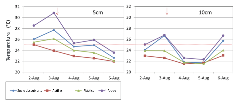 Fig. 2. Efecto del tratamiento de la superficie del suelo sobre la temperatura del suelo a medio día cerca de Wenatchee, WA (agosto de 2010). Los árboles fueron Gala / M.9. La flecha representa el evento de riego. (Granatstein, 2010).