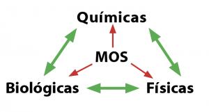Triangular diagram showing the relationship between organic matter and soil properties.