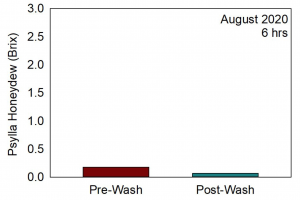 Chart showing the level of honeydew present pre- and post-washing in August. The pre-wash Brix level was less than 0.25 and the post-wash level being well below that.