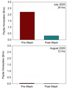 Chart showing the effect of washing on the amount of Honeydew present pre- and post-washing as measured by Brix scale. Shart also compares two different times during the season when the washing occurred. The first timing was in July with 24hr washing interval that decreased the Brix from slightly over 2.0 pre-wash compared to under 0.5 for post-wash. The next timing was in August suing 12hr interval where the pre-wash Brix was well below 0.5 and post-wash even less.