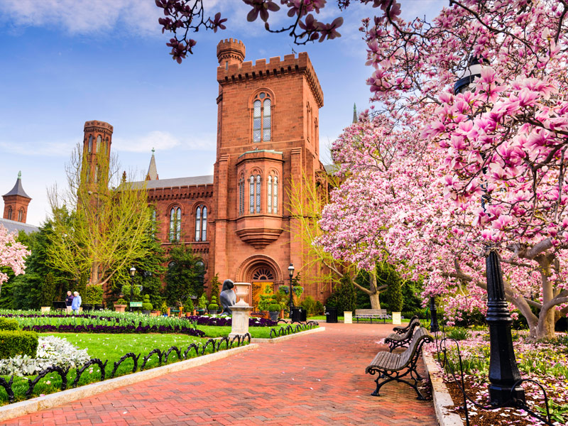 The Smithsonian Museums