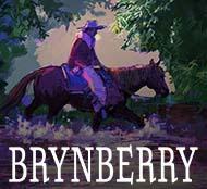 Brynberry