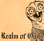 Realm of Owls