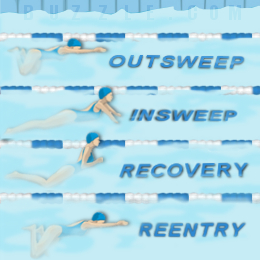 proper breaststroke techniques for swimming beginners Learning proper backstroke techniques can help you take stress off your back while working out your arms and legs  the breaststroke & how to swim faster.