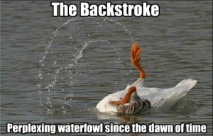 Backstroke Meme