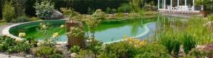 http://www.biotop-natural-pool.com