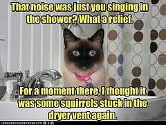 Singing in the shower meme