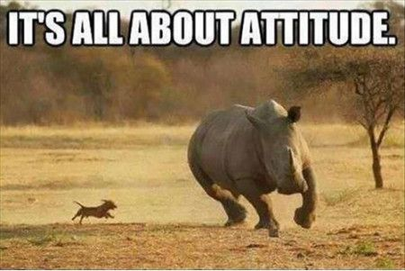 Funniest_Memes_it-s-all-about-attitude_17908