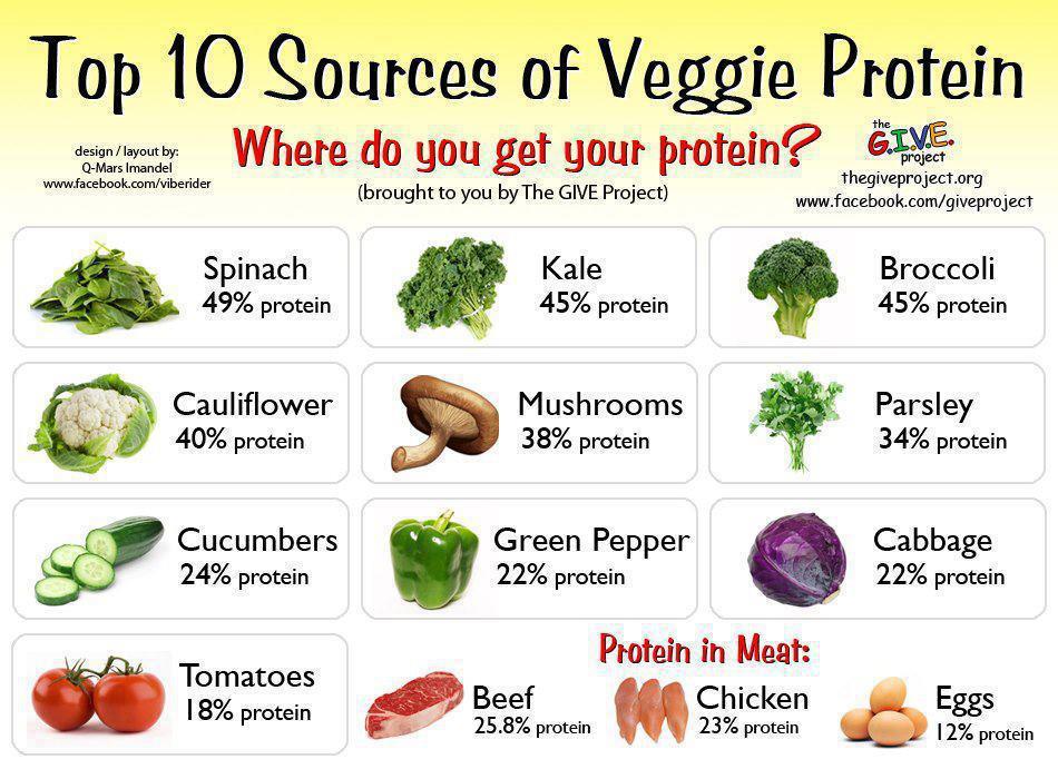 Swimmer Nutrition Vegetarians Can Still Get Plenty Of Protein