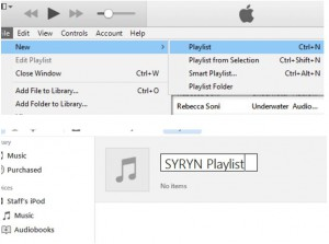 Troubleshooting SYRYN: Converting Files – Underwater Audio