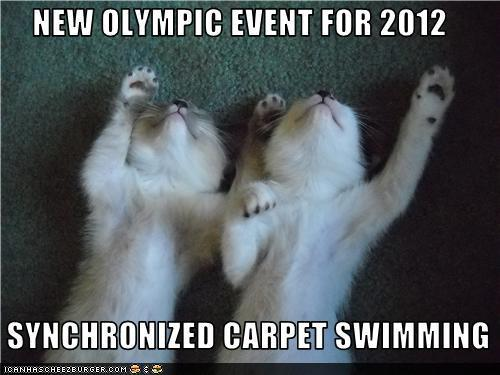 Cat Humor for Swimmers