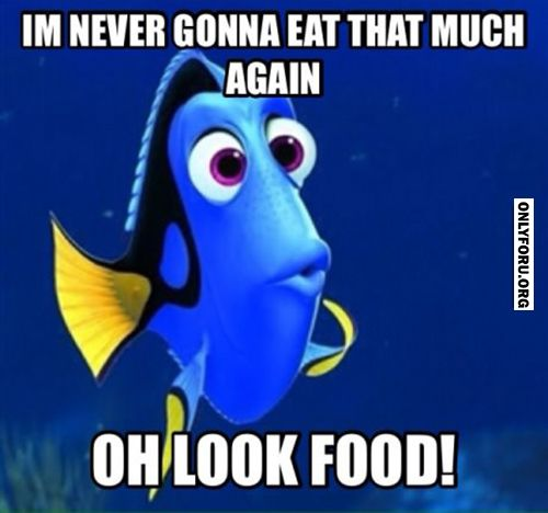 Forgetting Food Goals