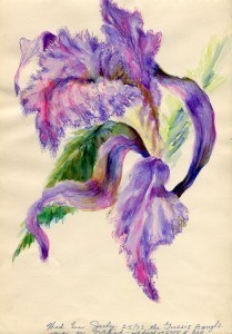 Orchid, 1973