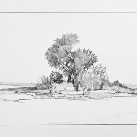Ben Johnson, Salina, Compositional Sketch, 2016