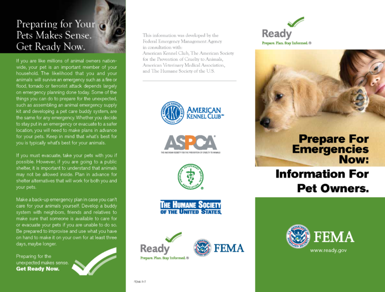Prepare For Emergencies Pet Owners