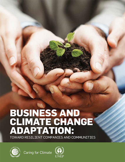 Business and Climate Change Adaptation: Toward Resilient Companies and Communities