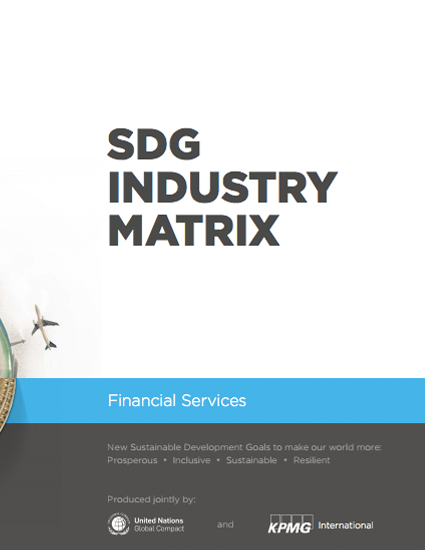 SDG Industry Matrix: Financial Services