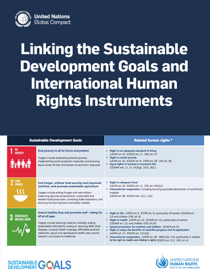 Linking the Sustainable Development Goals and International Human Rights Instruments
