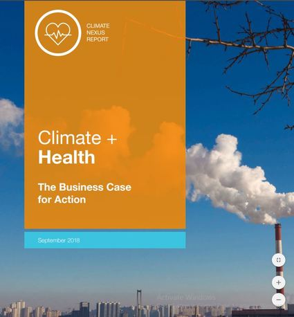 Climate and Health, The Business Case for Action