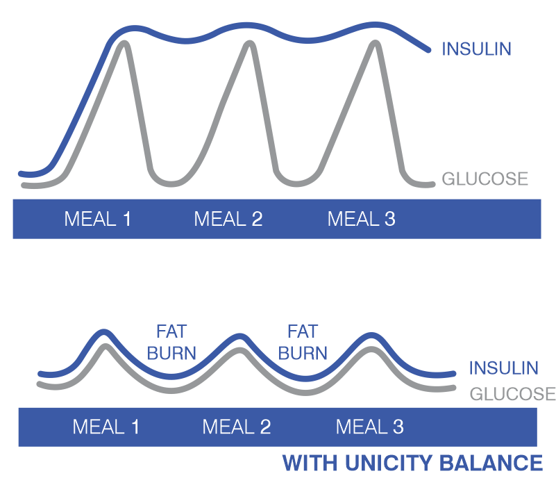 How Unicity Balance Works