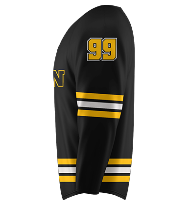 Hockey Boston Panthom