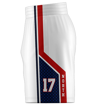 UA Team Shorts