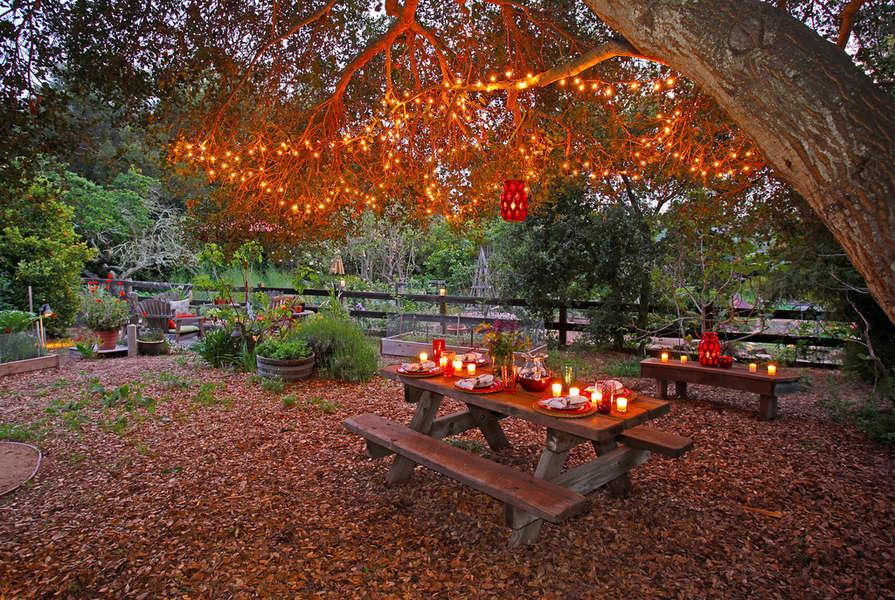 Magical picnic spot under shady oak
