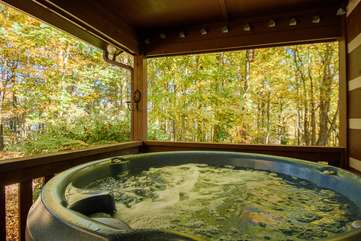 Hot Tub- Great for Relaxing!