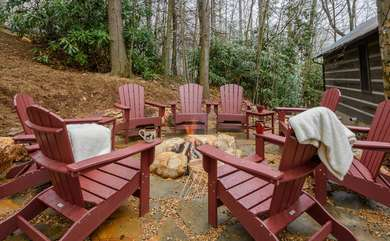 Fire Pit with Wood Included