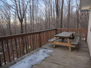 Beech Bear Retreat Picnic Table on Back Deck with private wooded view