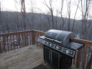 Beech Bear Retreat Grill and Deck with private wooded view